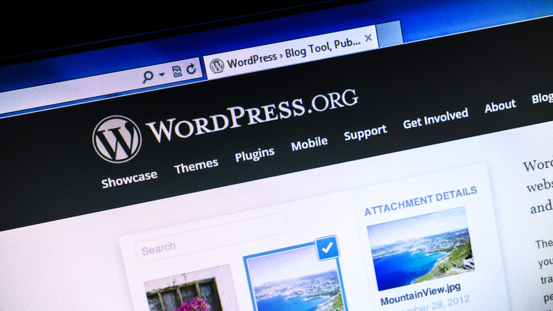 WordPress, SEO e content marketing
